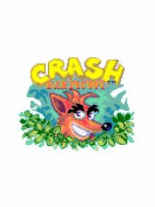 crash bandicoot (1)