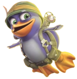 Sgt Bird